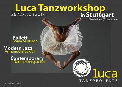 luca workshop