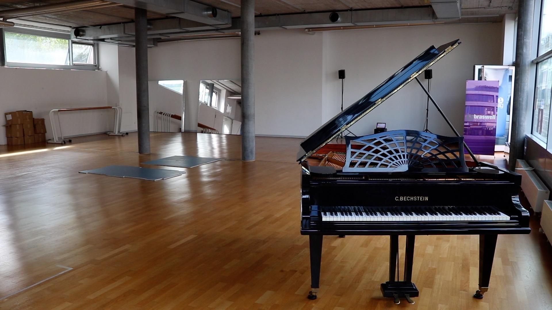 Braswell arts center - Armando Braswell